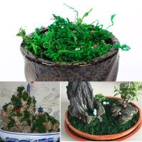 Picture of Artificial Bonsai Potted Plant with Dry Moss
