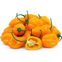 Picture of Fresh Habenero Peppers, 4kg, Yellow, 508 Pieces - Carton
