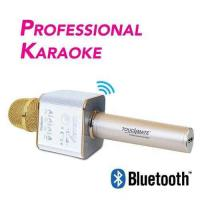 Picture of Touchmate Dual Speakers Wireless Professional Karaoke Mic