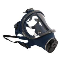 Picture of Eyevex Respirator-Full Mask, EFFR1000 - Carton Of 30 Pcs