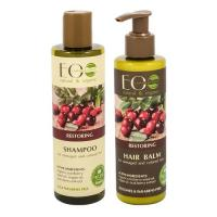 Picture of Organic Restoring Shampoo & Conditioner for Damaged and Colored Hair, 500g