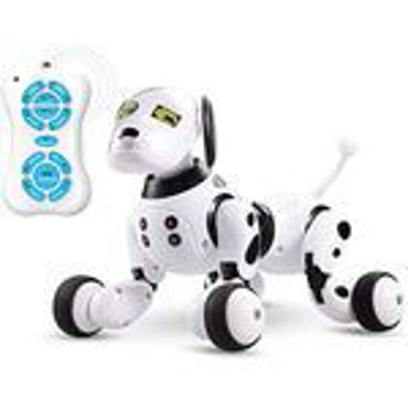 Picture for category RC Robots & Animals