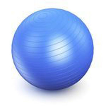 Picture for category Yoga Balls