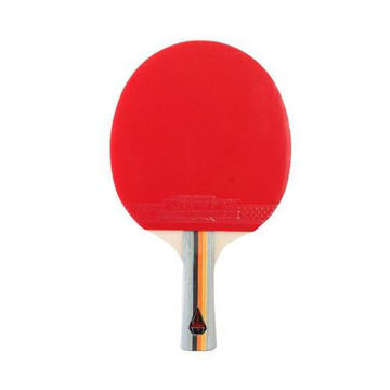 Picture of Short And Long Handle Table Tennis Bat