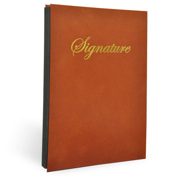 Picture of FIS Signature Book 18 Division Vinyl Cover - Brown, Pack of 11