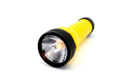 Picture for category Portable Lighting