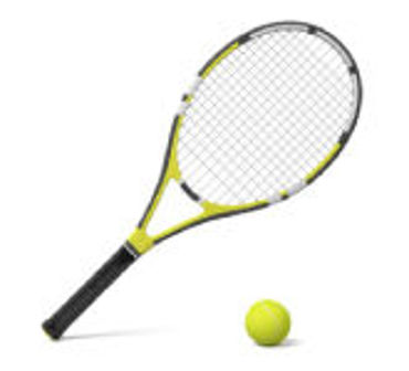 Picture for category Racquet Sports