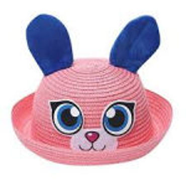 Picture for category Cartoon Hats