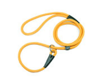 Picture for category Cat Collars & Leads