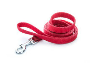 Picture for category Leashes