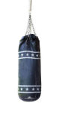 Picture for category Punching Bag & Sand Bag