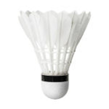 Picture for category Shuttlecock
