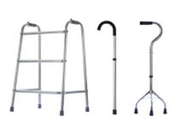 Picture for category Walking Stick