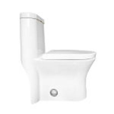 Picture for category Toilets & Toilet Parts