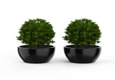 Picture for category Artificial Plants
