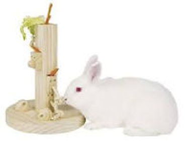 Picture for category Small Animal Supplies