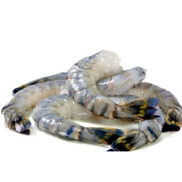 Picture of Frozen Peeled and Deveined Tail On Shrimp, Jumbo - Pack of 10
