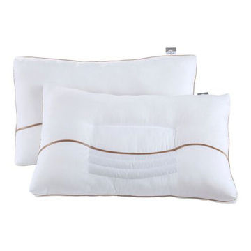 Picture of JD Buchwheat Pillow - White, Pack of 2, P05
