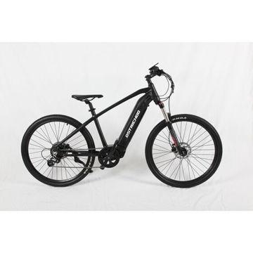 Picture of JD Ostrichoo 9 Speed Electric Mountain Bike - EBW04