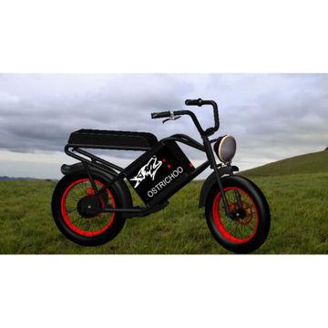 Picture of JD Outdoors Ostrichoo Fat Tire Electric Bike - EBW06