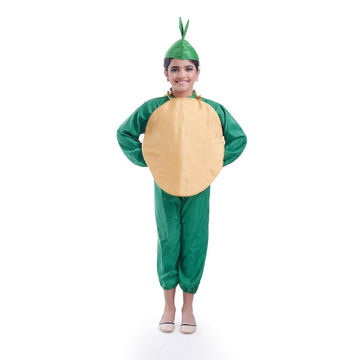 Picture of Potato Vegetable Fancydress For Kids (8-10 YRS)
